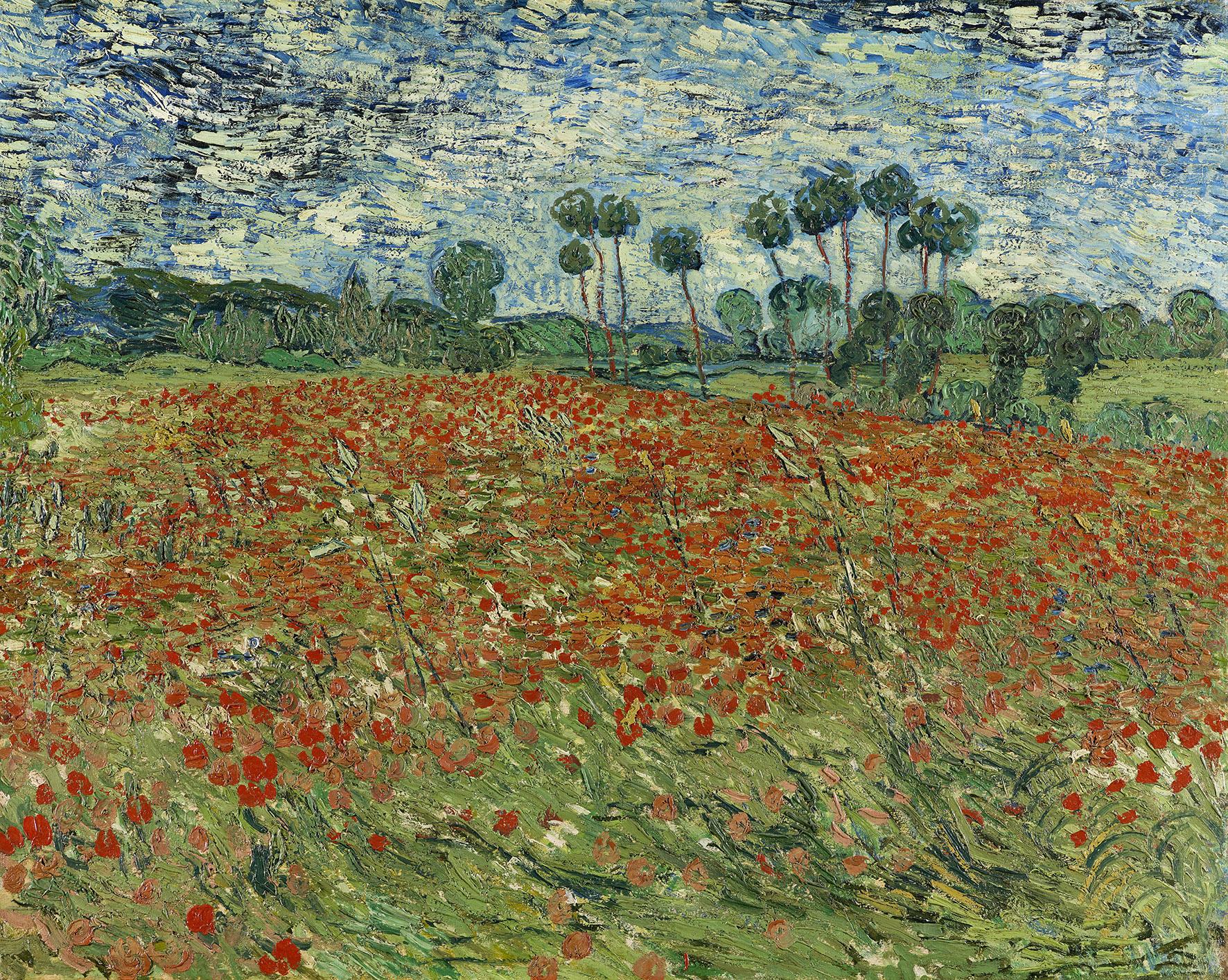 Mostra Quot Van Gogh Tra Il Grano E Il Cielo Quot Comune Di Vicenza