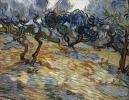 Vincent van Gogh, Ulivi, 1889 olio su tela, cm 51 x 65,2 Edimburgo, Scottish National Gallery, acquistato nel 1934 © Antonia Reeve