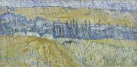 Vincent van Gogh, Paesaggio sotto la pioggia ad Auvers, 1890 olio su tela, cm 50 x 100 Cardiff, Amgueddfa Cymru - National Museum Wales / The Davies Sisters Collection