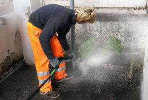 Aim ambiente il vapore al posto del diserbante per for Diserbante per erbacce