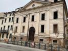 Nuovi aceri in piazza Matteotti