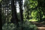 Parco Villa Bedin 15_credit_wownature
