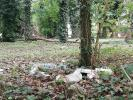 pulizia parco Astichello