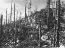 La Grande Guerra, Monte Zebio sopra Asiago (foto Archivio fotografico del Museo del Risorgimento e della Resistenza)